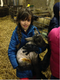 """My favourite part… was when I got to feed the baby animals because it was my first time to see one. I will always remember that!"" (Year 5 pupil)"